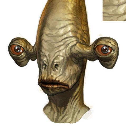Rakata (Star Wars the Old Republic)